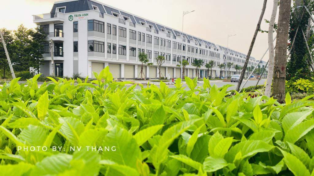 Dự án Lavila Tân An Trần Anh Group.