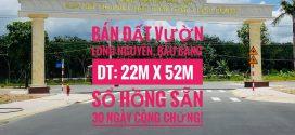 Bán đất ngay dự án khu dân cư Saigon Land 2 và dự án Nam Long 3 Bình Dương xã Long Nguyên, Bàu Bàng